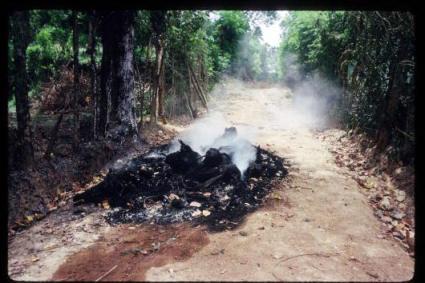 Violence In Sri Lanka